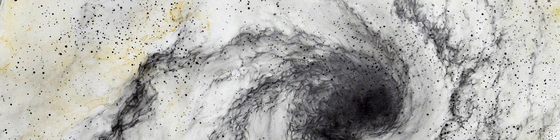 現代美術アーティスト・山本基が鉛筆で描く細密ドローイング。